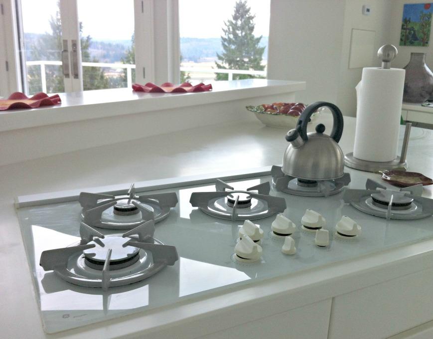Clean Cooktop 2