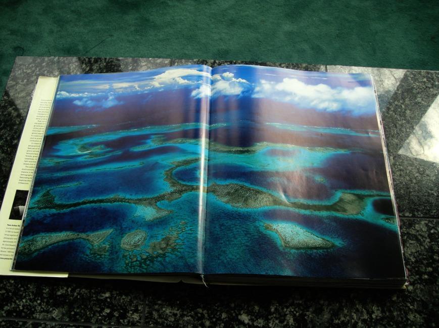 picture book 006