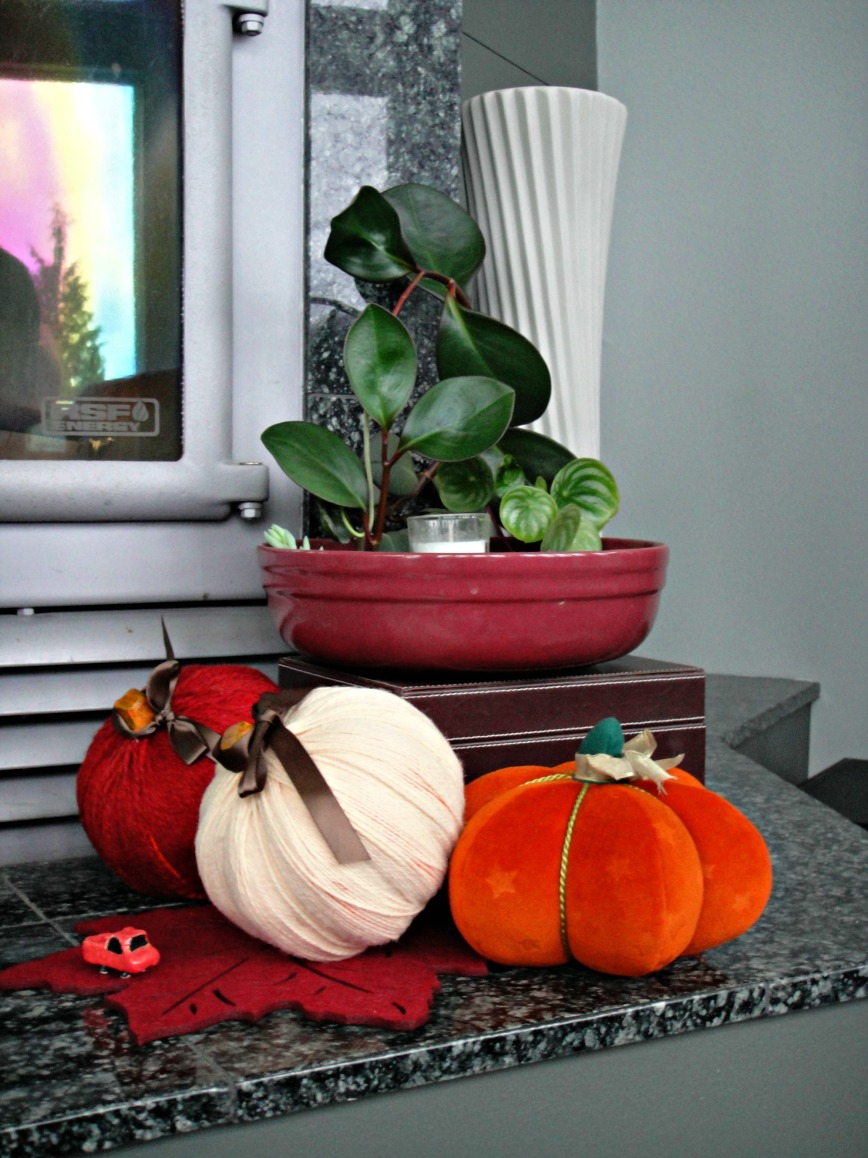 Pumpkins and Leave Rootings