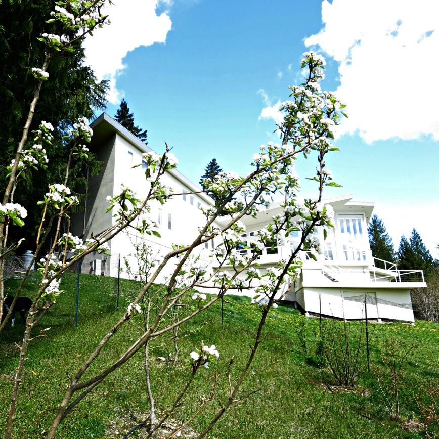 Pear & House