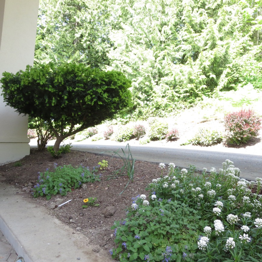 Portico flower bed