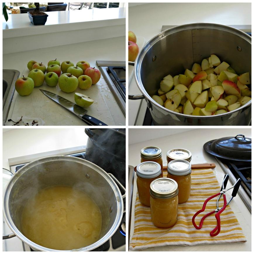 Applesauce Collage