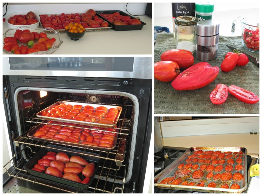 Roasted Tomato Collage
