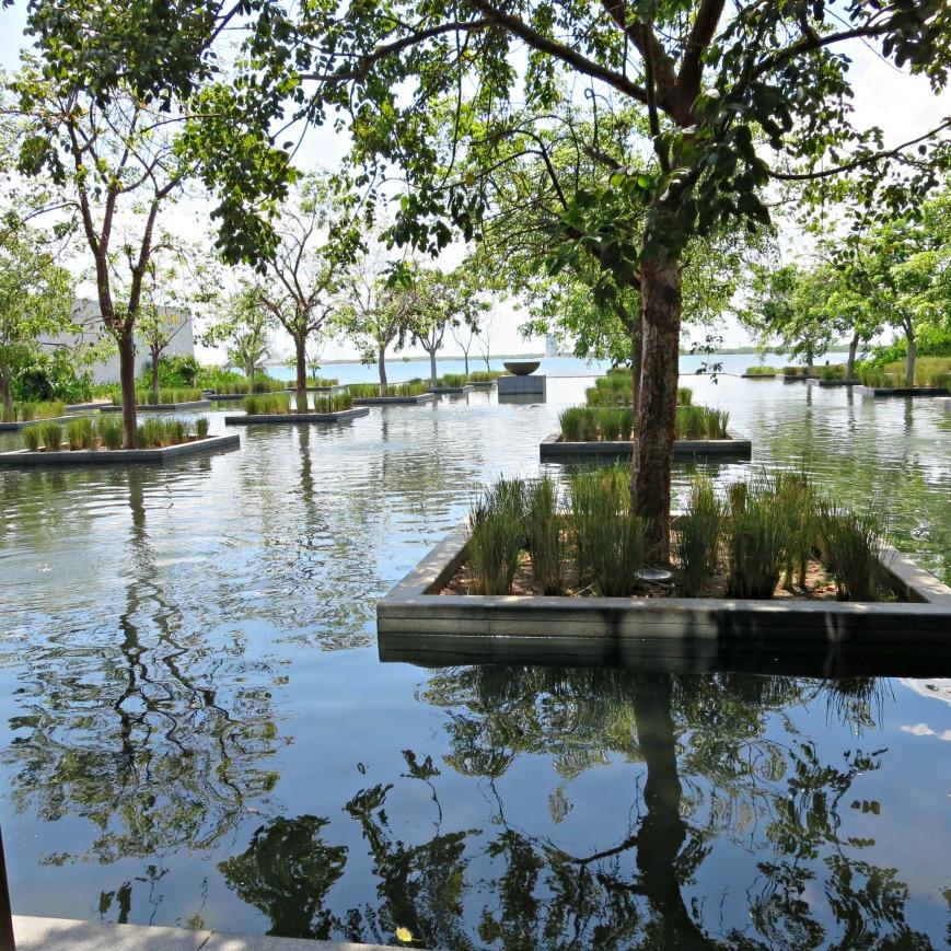 ToT2 Pond