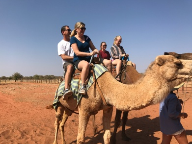 Camel Ride Us